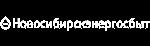 АО «Новосибирскэнергосбыт»